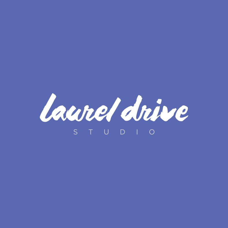 Laurel Drive Photography Studio Branding - 3