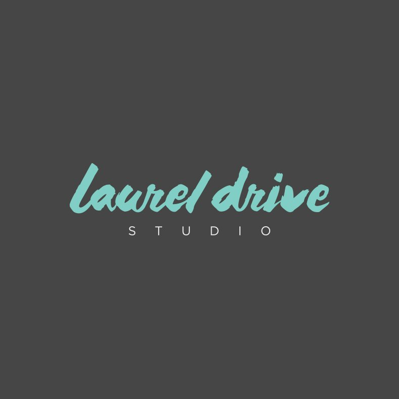 Laurel Drive Photography Studio Branding - 4